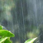 にわか雨ってどんな雨?その意味と通り雨や夕立、ゲリラ豪雨との違い
